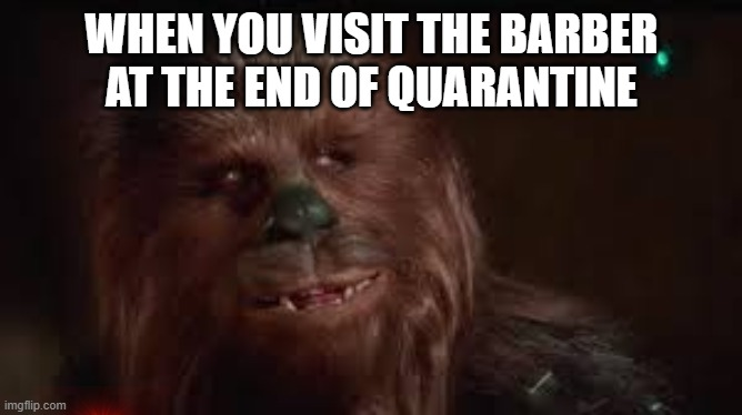 WHEN YOU VISIT THE BARBER AT THE END OF QUARANTINE | image tagged in corona virus,star wars,chewbacca | made w/ Imgflip meme maker