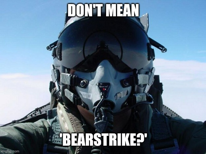 Fighter Pilot | DON'T MEAN 'BEARSTRIKE?' | image tagged in fighter pilot | made w/ Imgflip meme maker