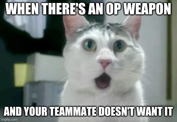 OMG Cat |  WHEN THERE'S AN OP WEAPON; AND YOUR TEAMMATE DOESN'T WANT IT | image tagged in memes,omg cat,wow,funny,lol,omg | made w/ Imgflip meme maker