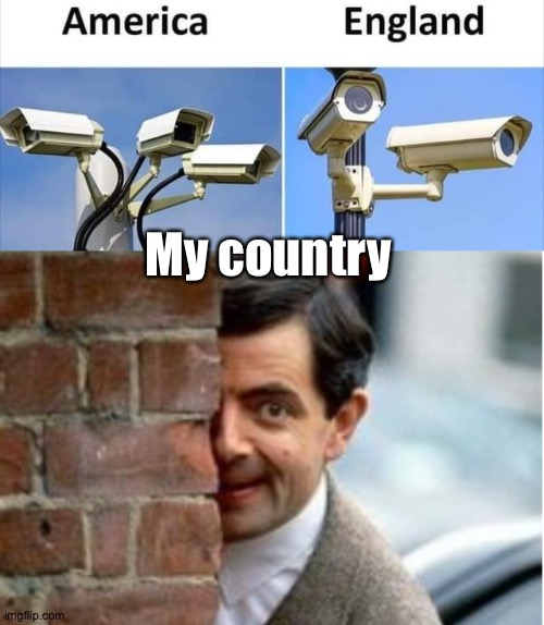 Security |  My country | image tagged in martial arts | made w/ Imgflip meme maker