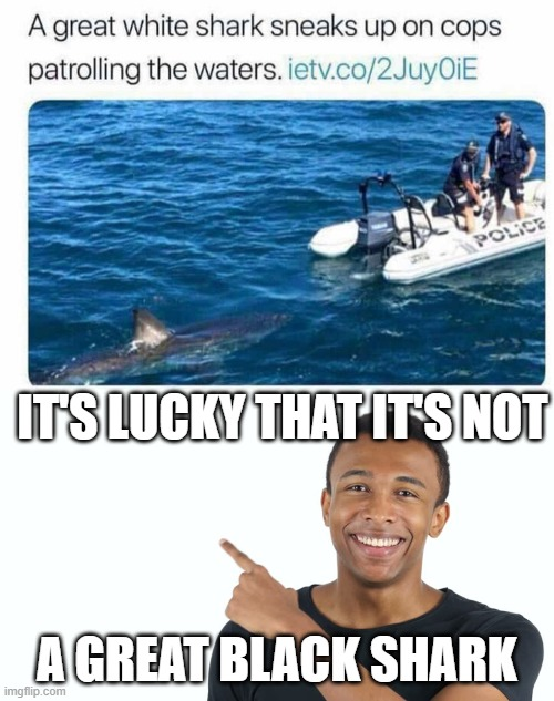 A Fish Of A Different Color |  IT'S LUCKY THAT IT'S NOT; A GREAT BLACK SHARK | image tagged in funny memes | made w/ Imgflip meme maker