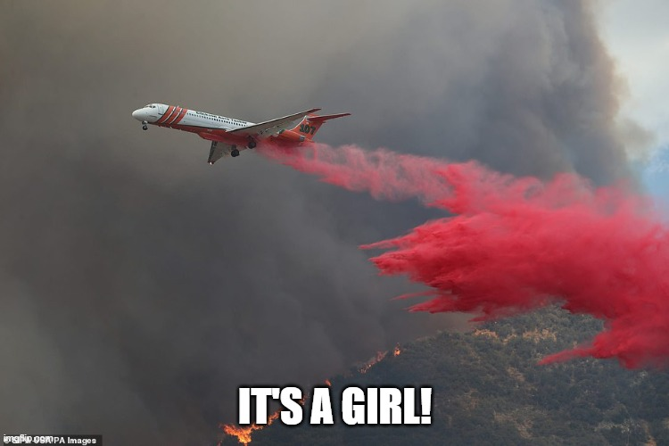 FIREFIGHTING AIRPLANE |  IT'S A GIRL! | image tagged in gender reveal,fire plane,firefighting,disaster,baby shower | made w/ Imgflip meme maker