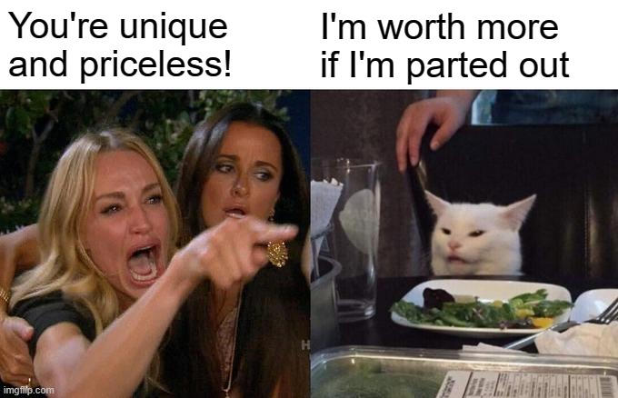 You're unique and priceless! I'm worth more if I'm parted out | image tagged in memes,woman yelling at cat | made w/ Imgflip meme maker