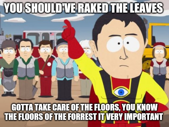 Thank Captain hindsight |  YOU SHOULD'VE RAKED THE LEAVES; GOTTA TAKE CARE OF THE FLOORS, YOU KNOW THE FLOORS OF THE FORREST IT VERY IMPORTANT | image tagged in memes,captain hindsight | made w/ Imgflip meme maker