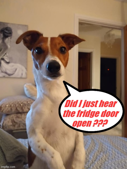 """ I'm Cooper - and you are not "" 
