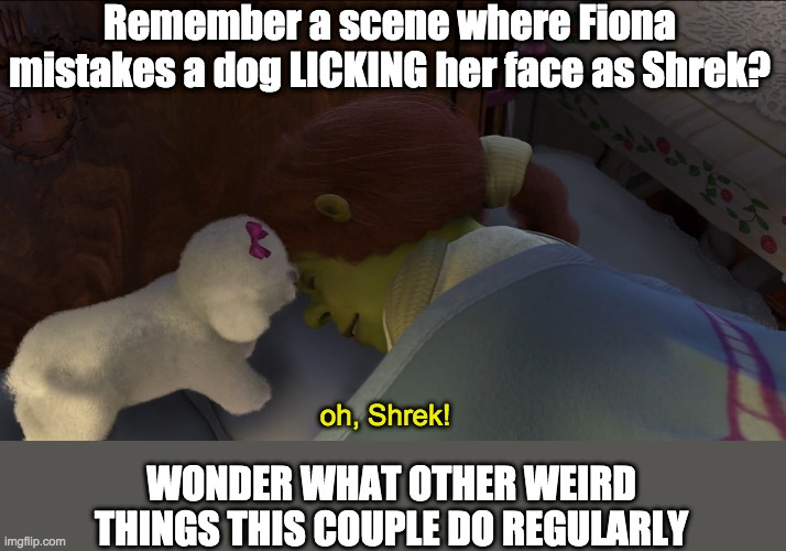 Remember a scene where Fiona mistakes a dog LICKING her face as Shrek? oh, Shrek! WONDER WHAT OTHER WEIRD THINGS THIS COUPLE DO REGULARLY | image tagged in shrek | made w/ Imgflip meme maker