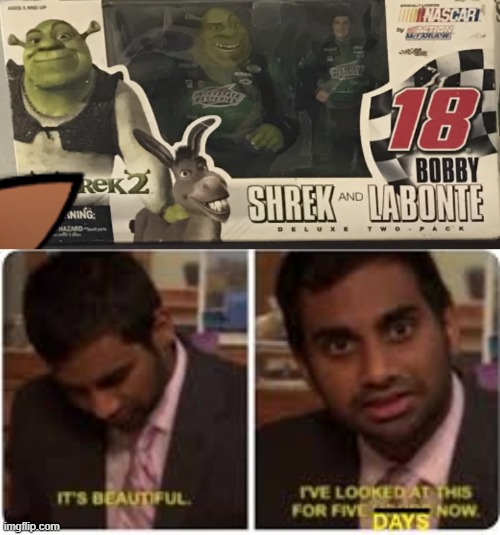 Super Shrek R | image tagged in shrek,nascar | made w/ Imgflip meme maker