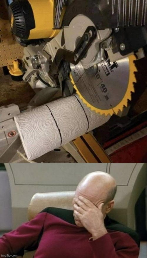 what the heck? | image tagged in memes,captain picard facepalm,wtf,stupid humor,paper towels,pointless | made w/ Imgflip meme maker