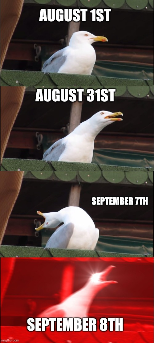 Inhaling Seagull |  AUGUST 1ST; AUGUST 31ST; SEPTEMBER 7TH; SEPTEMBER 8TH | image tagged in memes,inhaling seagull | made w/ Imgflip meme maker