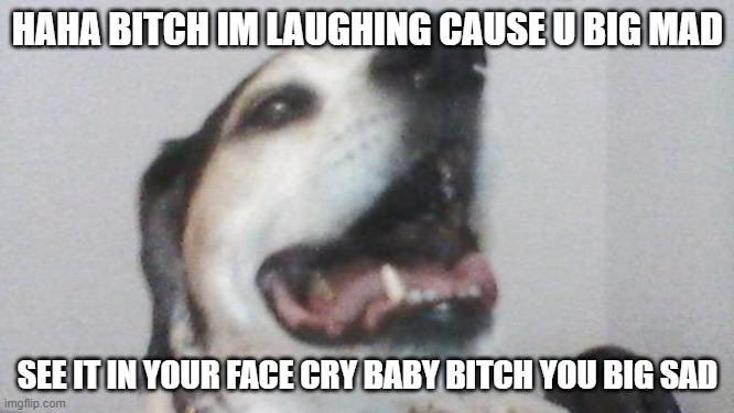 My Dog Speaks Truth | image tagged in dog meme,dog,meme | made w/ Imgflip meme maker