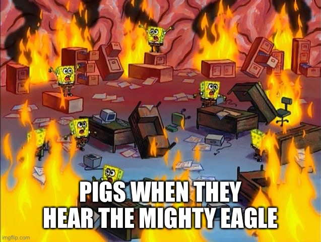 spongebob fire |  PIGS WHEN THEY HEAR THE MIGHTY EAGLE | image tagged in spongebob fire,angry birds,mighty eagle,memes | made w/ Imgflip meme maker