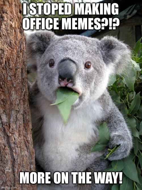 Get ready |  I STOPED MAKING OFFICE MEMES?!? MORE ON THE WAY! | image tagged in memes,surprised koala | made w/ Imgflip meme maker