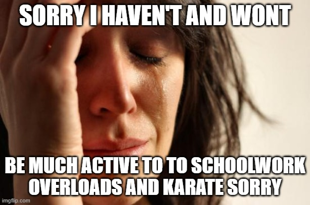 SOSORRY |  SORRY I HAVEN'T AND WONT; BE MUCH ACTIVE TO TO SCHOOLWORK OVERLOADS AND KARATE SORRY | image tagged in memes,first world problems,inactive,goodbye,might delete | made w/ Imgflip meme maker