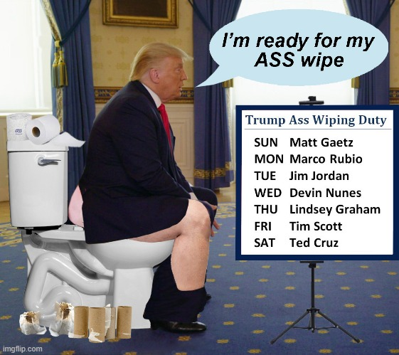 The New Trumpian Republican Party | image tagged in scumbag republicans,ass,toilet paper,donald trump is an idiot,trump meme,trump asswipe | made w/ Imgflip meme maker