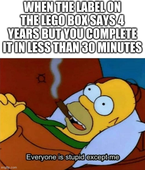 Big brain |  WHEN THE LABEL ON THE LEGO BOX SAYS 4 YEARS BUT YOU COMPLETE IT IN LESS THAN 30 MINUTES | image tagged in everyone is stupid except me,lego | made w/ Imgflip meme maker
