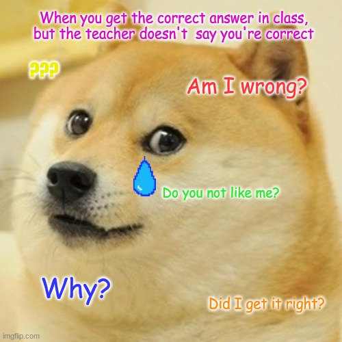 Sad Doge |  When you get the correct answer in class, but the teacher doesn't  say you're correct; ??? Am I wrong? Do you not like me? Why? Did I get it right? | image tagged in memes,doge | made w/ Imgflip meme maker