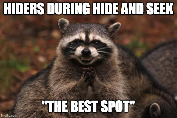 "evil genius racoon |  HIDERS DURING HIDE AND SEEK; ""THE BEST SPOT"" 