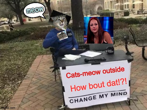 Cats meow't side |  meow; Cats-meow outside; How bout dat!?! | image tagged in memes,change my mind,how,that,cats | made w/ Imgflip meme maker