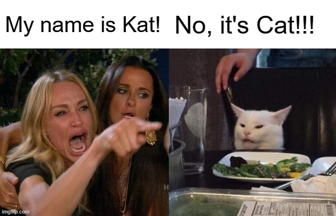 Spelling argument |  My name is Kat! No, it's Cat!!! | image tagged in memes,woman yelling at cat,funny,cats,animals,spelling | made w/ Imgflip meme maker