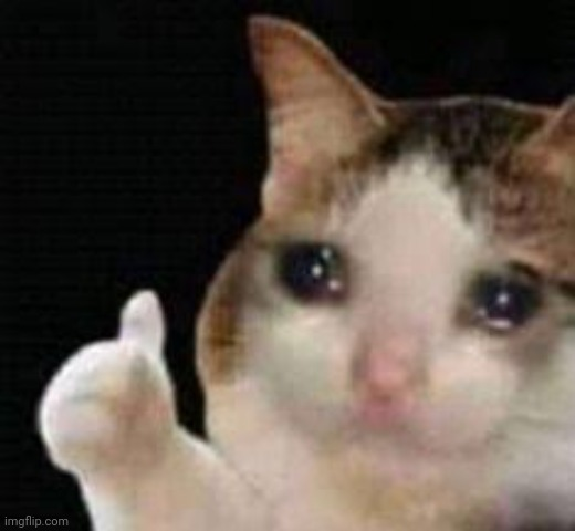 Approved crying cat | image tagged in approved crying cat | made w/ Imgflip meme maker