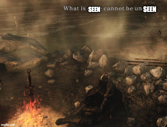 Darksouls II SotFS Bonfire Ascetic Warning | SEEN SEEN | image tagged in darksouls ii sotfs bonfire ascetic warning | made w/ Imgflip meme maker