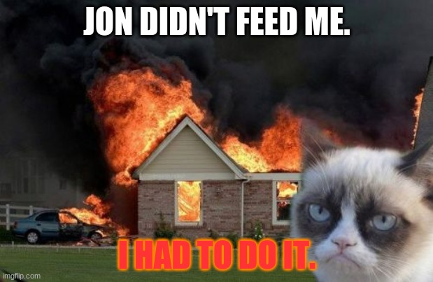Garfield |  JON DIDN'T FEED ME. I HAD TO DO IT. | image tagged in memes,burn kitty,grumpy cat | made w/ Imgflip meme maker