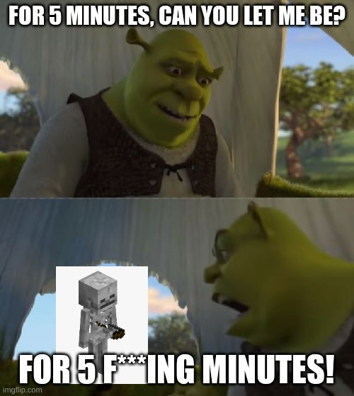 Could you not ___ for 5 MINUTES |  FOR 5 MINUTES, CAN YOU LET ME BE? FOR 5 F***ING MINUTES! | image tagged in could you not ___ for 5 minutes | made w/ Imgflip meme maker