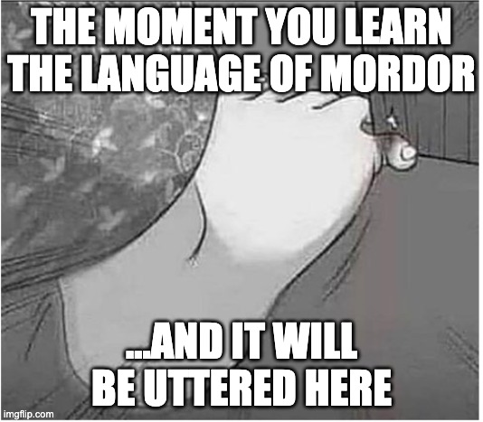 When you ash nazg your gimbatul |  THE MOMENT YOU LEARN THE LANGUAGE OF MORDOR; ...AND IT WILL BE UTTERED HERE | image tagged in lotr,the hobbit,mordor,the one ring | made w/ Imgflip meme maker