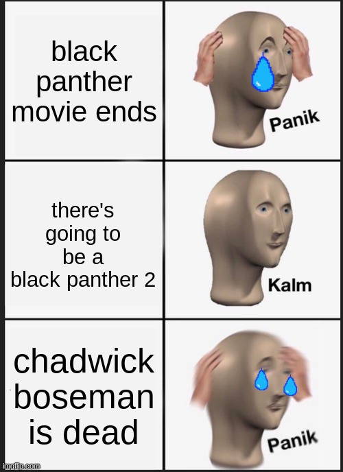sad |  black panther movie ends; there's going to be a black panther 2; chadwick boseman is dead | image tagged in memes,panik kalm panik | made w/ Imgflip meme maker