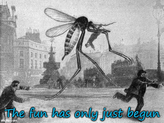 The fun has only just begun | image tagged in mosquito attack | made w/ Imgflip meme maker