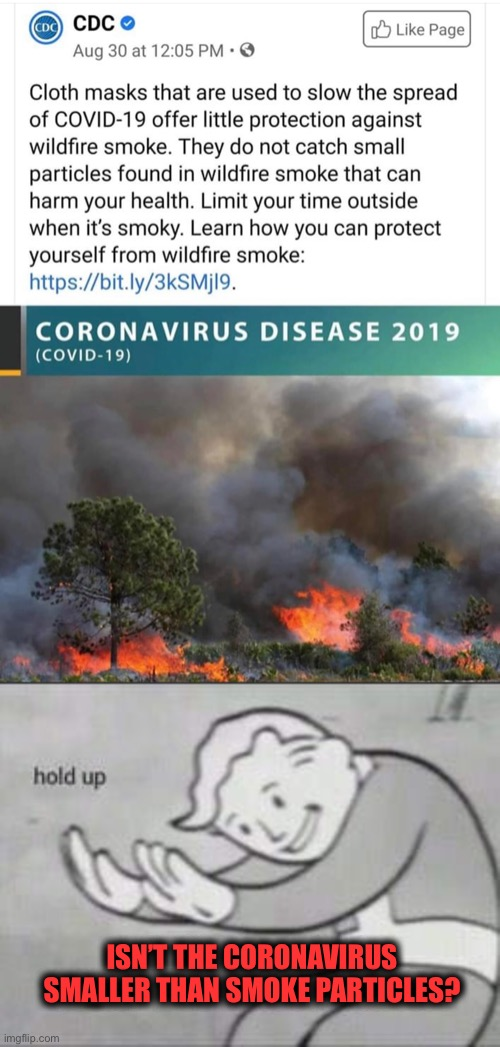 I just don't get it ... |  ISN'T THE CORONAVIRUS SMALLER THAN SMOKE PARTICLES? | image tagged in fallout hold up,coronavirus,cdc,liars,two standards,politics | made w/ Imgflip meme maker