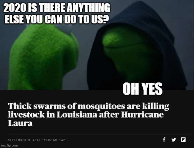2020, good year. |  2020 IS THERE ANYTHING ELSE YOU CAN DO TO US? OH YES | image tagged in memes,evil kermit,fun,funny not funny | made w/ Imgflip meme maker