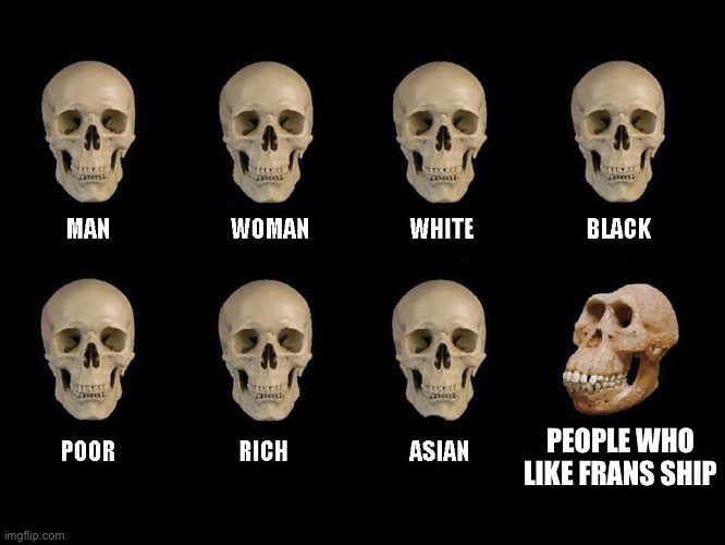 So true |  PEOPLE WHO LIKE FRANS SHIP | image tagged in empty skulls of truth,no frans just stop | made w/ Imgflip meme maker