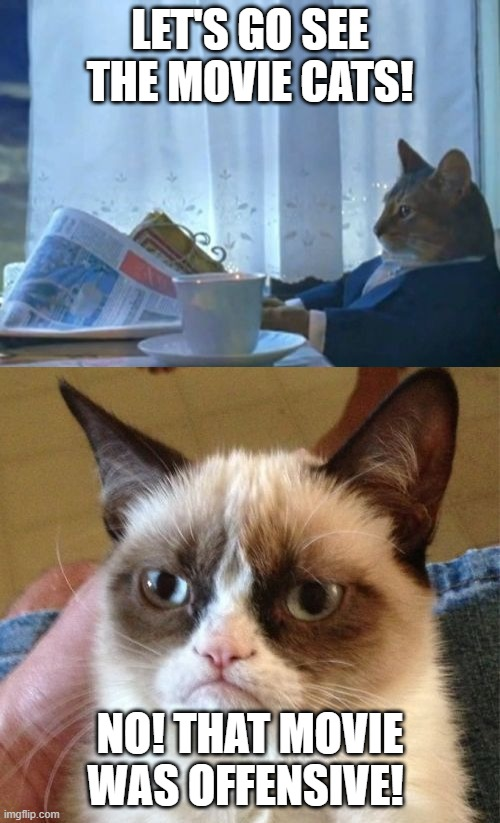 this is true |  LET'S GO SEE THE MOVIE CATS! NO! THAT MOVIE WAS OFFENSIVE! | image tagged in memes,grumpy cat,i should buy a boat cat,cats,animals,funny | made w/ Imgflip meme maker