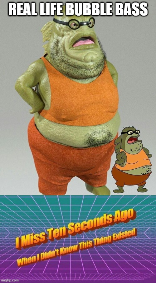 Real life Bubble Bass |  REAL LIFE BUBBLE BASS | image tagged in i miss ten seconds ago,memes,funny | made w/ Imgflip meme maker