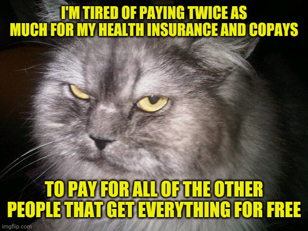 socialism |  I'M TIRED OF PAYING TWICE AS MUCH FOR MY HEALTH INSURANCE AND COPAYS; TO PAY FOR ALL OF THE OTHER PEOPLE THAT GET EVERYTHING FOR FREE | image tagged in irritated cat,meme,socialism,memes,health insurance,republican | made w/ Imgflip meme maker
