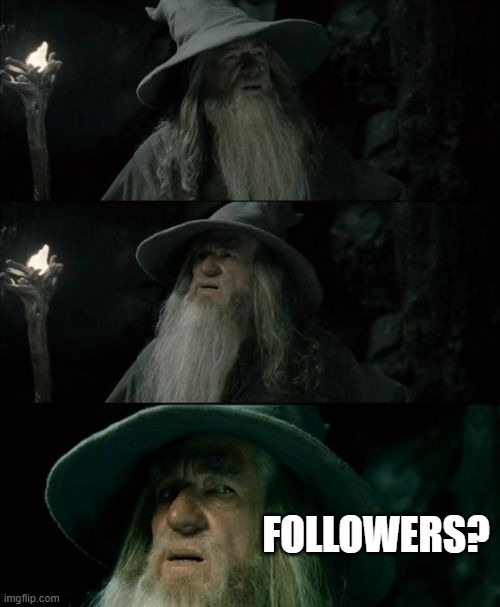 Confused Gandalf Meme |  FOLLOWERS? | image tagged in memes,confused gandalf,memes | made w/ Imgflip meme maker