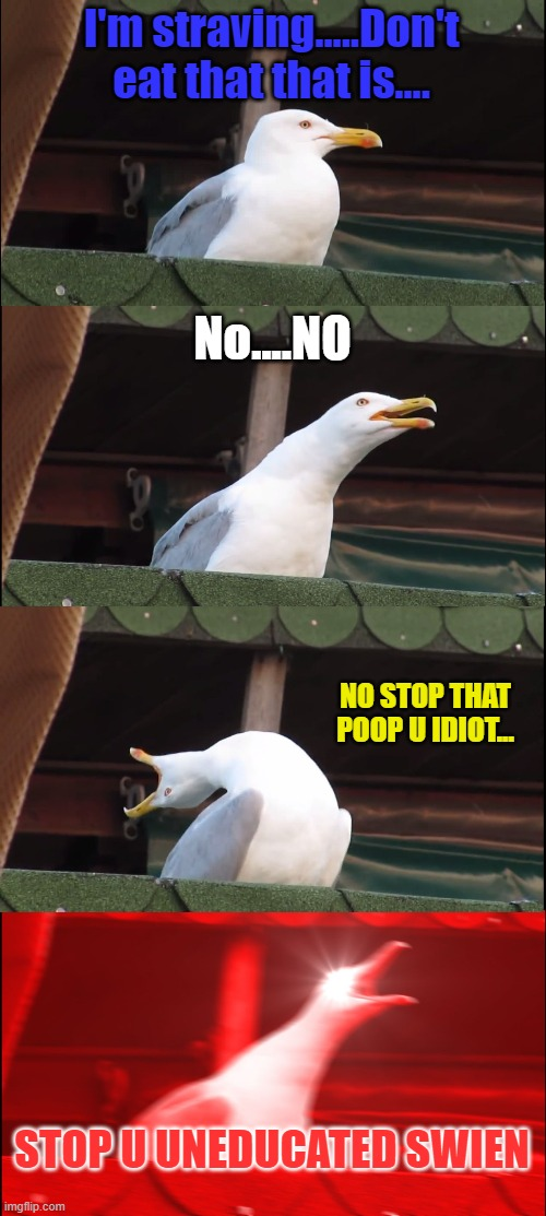 Inhaling Seagull Meme |  I'm straving.....Don't eat that that is.... No....NO; NO STOP THAT POOP U IDIOT... STOP U UNEDUCATED SWIEN | image tagged in memes,inhaling seagull | made w/ Imgflip meme maker