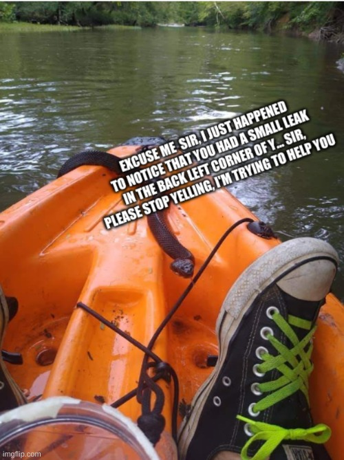 Snakes on a kayak | image tagged in snakes on a plane,airplane,snake | made w/ Imgflip meme maker