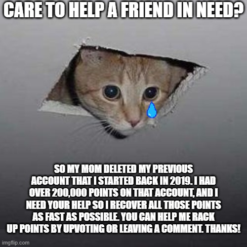 Ceiling Cat Meme |  CARE TO HELP A FRIEND IN NEED? SO MY MOM DELETED MY PREVIOUS ACCOUNT THAT I STARTED BACK IN 2019. I HAD OVER 200,000 POINTS ON THAT ACCOUNT, AND I NEED YOUR HELP SO I RECOVER ALL THOSE POINTS AS FAST AS POSSIBLE. YOU CAN HELP ME RACK UP POINTS BY UPVOTING OR LEAVING A COMMENT. THANKS! | image tagged in memes,ceiling cat,please help me | made w/ Imgflip meme maker