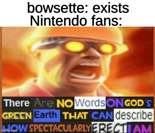 is this meme format dead? |  bowsette: exists; Nintendo fans: | image tagged in there are no words on god's green earth | made w/ Imgflip meme maker