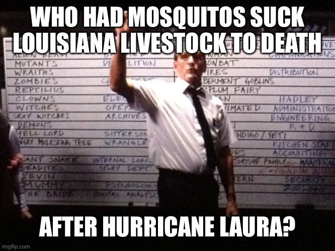 Mosquitos suck Louisiana livestock to death after hurricane Laura |  WHO HAD MOSQUITOS SUCK LOUISIANA LIVESTOCK TO DEATH; AFTER HURRICANE LAURA? | image tagged in who had x for y,mosquitos kill livestock,hurricane,louisiana | made w/ Imgflip meme maker