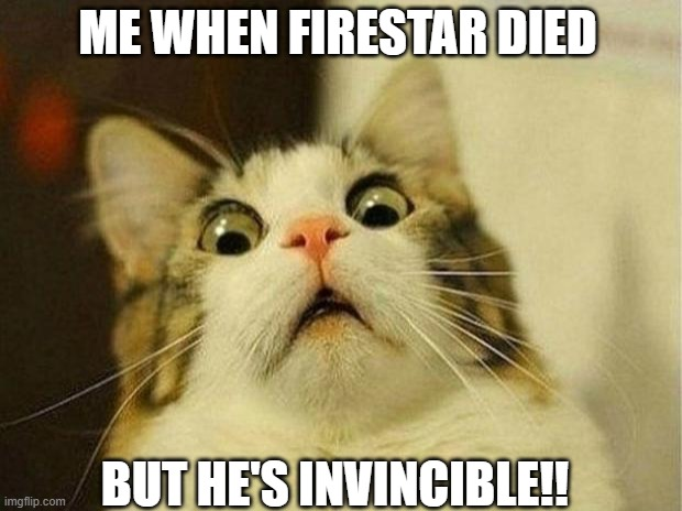 Scared Cat Meme |  ME WHEN FIRESTAR DIED; BUT HE'S INVINCIBLE!! | image tagged in memes,scared cat,warriors,firestar,warriorcats | made w/ Imgflip meme maker