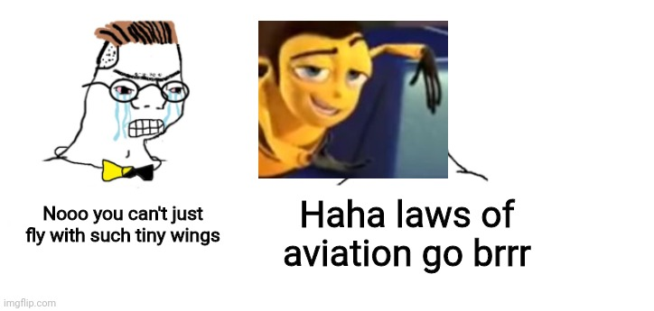 nooo haha go brrr |  Nooo you can't just fly with such tiny wings; Haha laws of aviation go brrr | image tagged in nooo haha go brrr,memes,funny,crossover,according to all known laws of aviationlaws,bee movie | made w/ Imgflip meme maker
