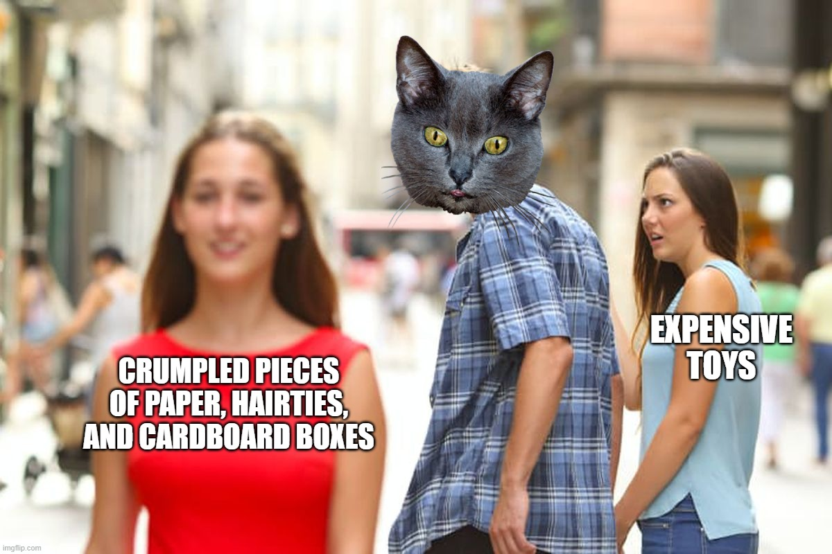 Distracted Boyfriend |  EXPENSIVE TOYS; CRUMPLED PIECES OF PAPER, HAIRTIES, AND CARDBOARD BOXES | image tagged in memes,distracted boyfriend | made w/ Imgflip meme maker