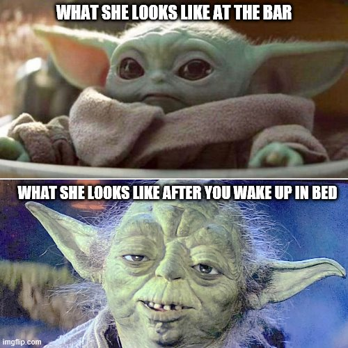 WHAT SHE LOOKS LIKE AT THE BAR; WHAT SHE LOOKS LIKE AFTER YOU WAKE UP IN BED | image tagged in baby yoda vs old yoda | made w/ Imgflip meme maker