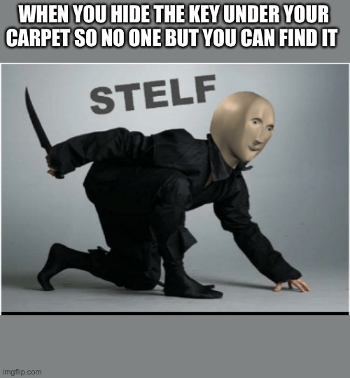 WHEN YOU HIDE THE KEY UNDER YOUR CARPET SO NO ONE BUT YOU CAN FIND IT | image tagged in stelf | made w/ Imgflip meme maker