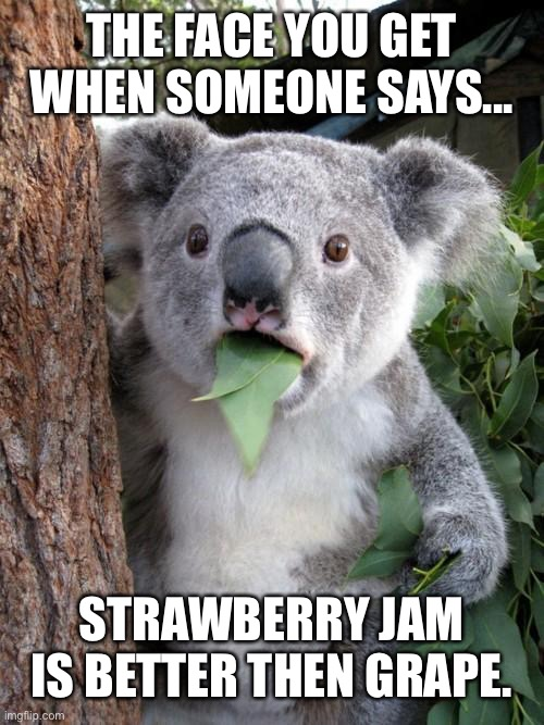 Surprised Koala |  THE FACE YOU GET WHEN SOMEONE SAYS... STRAWBERRY JAM IS BETTER THEN GRAPE. | image tagged in memes,surprised koala | made w/ Imgflip meme maker