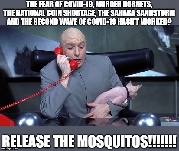 Release the mosquitos |  THE FEAR OF COVID-19, MURDER HORNETS, THE NATIONAL COIN SHORTAGE, THE SAHARA SANDSTORM AND THE SECOND WAVE OF COVID-19 HASN'T WORKED? RELEASE THE MOSQUITOS!!!!!!! | image tagged in dr evil mr bigglesworth phone call austin powers cat | made w/ Imgflip meme maker