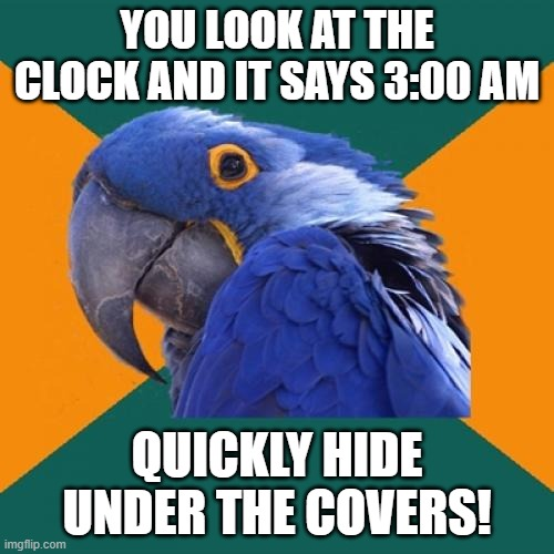 Paranoid Parrot Meme |  YOU LOOK AT THE CLOCK AND IT SAYS 3:00 AM; QUICKLY HIDE UNDER THE COVERS! | image tagged in memes,paranoid parrot | made w/ Imgflip meme maker